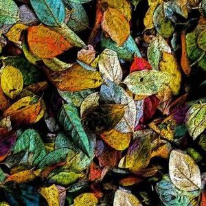 Bilde av Jersey digital fargerike høstblader